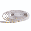 Strip LED 5050 60 LED/m CCT regolabile caldo/freddo 24V IP33 10.8W/m bobina 5m