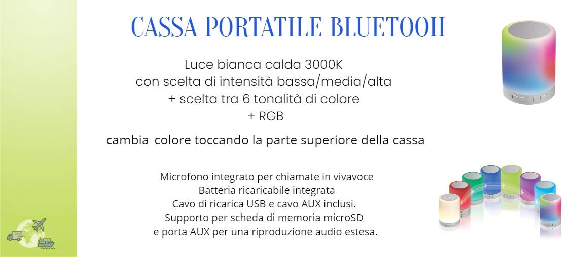 Cassa Portatile Bluetooh